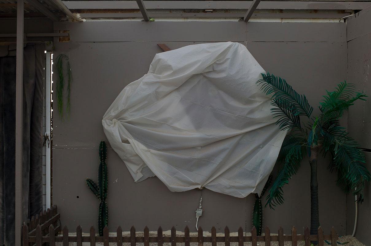 דויד סקורי - צילום פורטרט לסגר